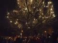 Rozsviceni vanocniho stromu 2014 - 14