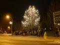 Rozsviceni vanocniho stromu 2014 - 2